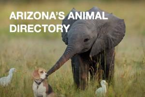 arizona-animal-directory
