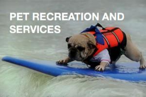 pet-recreation-services