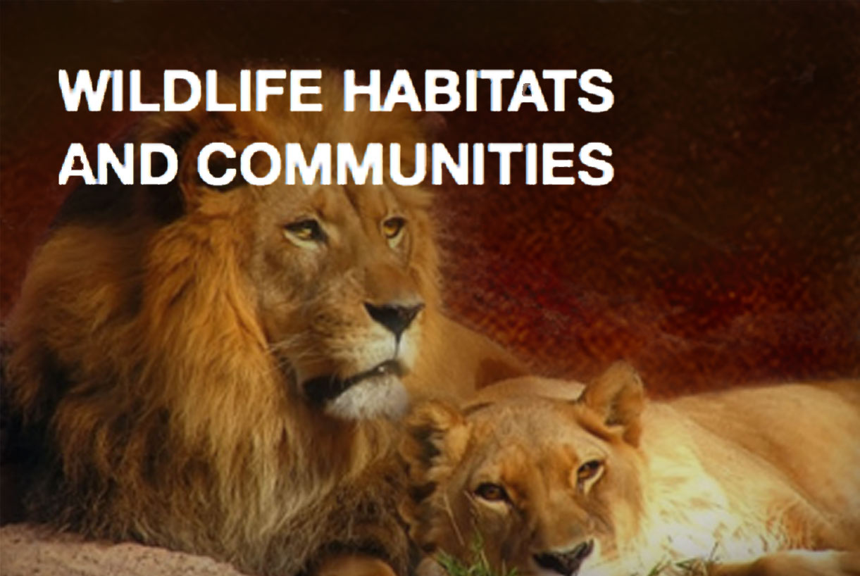 wildlife-habitats-communities