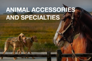 animal-accessories-specialties