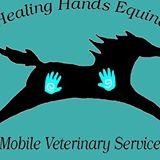 healing-hands-equine