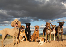 adventure-dog-ranch